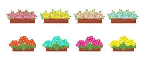 flores em vasos em conjunto de estilo simples, grande coleção de flores da primavera em caixas, vetores isolados