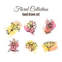 Conjunto decorativo floral com salpicos coloridos vetor