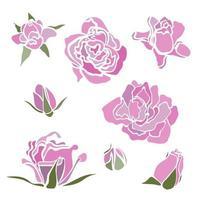 conjunto colorido de vetor com flores. rosa rosa. elementos de clip-art para cartão postal, banner, impressão de camiseta, convite, cartão comemorativo, pôster