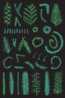 mão desenhada conjunto ramo fino de abeto verde vetor