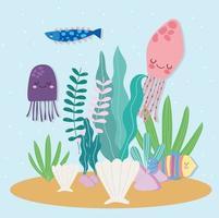 água-viva peixe polvo vetor