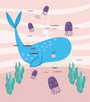 baleias-vivas subaquáticas vetor