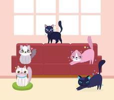 gatos engraçados animais domésticos no sofá vetor