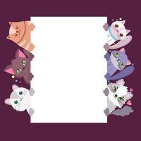 gatos adoráveis animais fofos felino doméstico com banner vetor