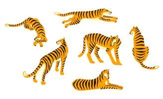 Vestor conjunto de tigres bonitos. Ilustração da moda.
