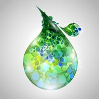 Folhas orgânicas vetoriais ou gotas vetor