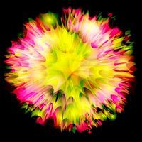 Explosão / desenho vetorial de flor