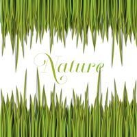 Modelo verde natural com grama de vetor.