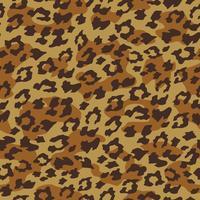 Fundo sem emenda de leopardo. Ilustração vetorial
