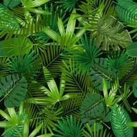 Padrão sem emenda com palmeira tropical deixa no fundo preto.