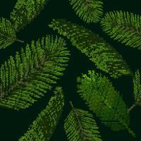 Padrão sem emenda com palmeira tropical deixa no fundo preto coletado de cartas
