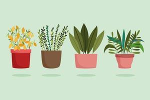 jardinagem, diferentes plantas de interior na decoração de vasos vetor