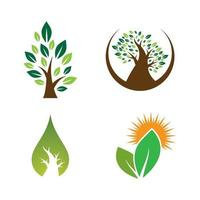 design de imagens do logotipo da árvore vetor