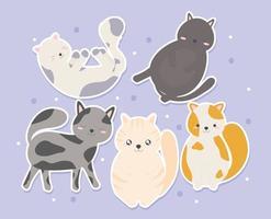 pacote de gatos fofos vetor