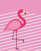 ilustração vetorial fundo de verão fofo flamingo rosa vetor