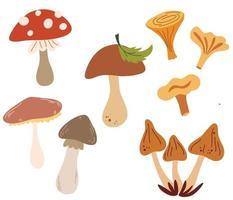 conjunto de cogumelos diferentes. tipos de cogumelos de outono, cep, chanterelle, mel agaric, cogumelos ostra, fly agaric. elementos de design para cartões postais, banners, convites, negócios. ilustração vetorial. vetor