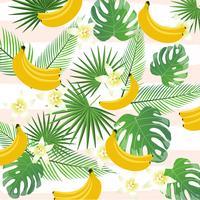 Fundo tropical com bananas, folhas de palmeira e monstera vetor
