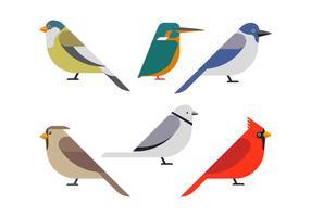 Clipart de pássaro definir ilustração vetorial vetor