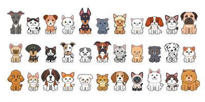 diferentes tipos de gatos e cães de desenho vetorial vetor