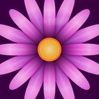 Flor, flor, clip, ilustração vetor