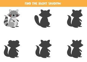 encontre a sombra certa do guaxinim. jogo educativo para crianças. vetor