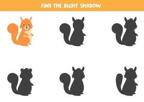 Encontre a sombra correta do esquilo bonito dos desenhos animados. planilha para crianças. vetor