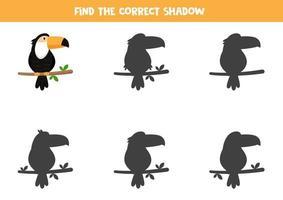 encontre a sombra certa do tucano. planilha para impressão para crianças. vetor