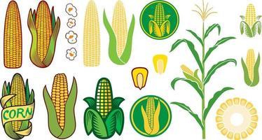 coleção de ícones de milho vetor