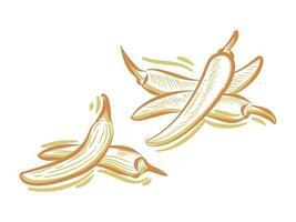 definir ilustração plana de chili para elemento de marca e logotipo vetor