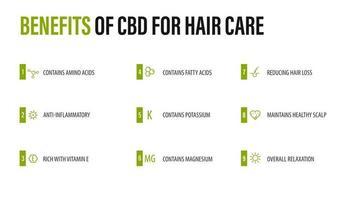 benefícios do cbd para cuidados com os cabelos, cartaz infográfico branco com ícones de benefícios médicos vetor