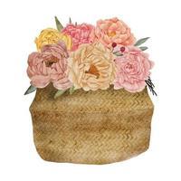 aquarela arranjo de flores de peônia na cesta vetor