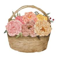 Ilustração em aquarela de arranjo de flores peônia em uma cesta vetor