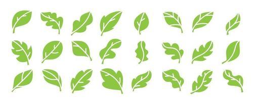 folha ícones vetoriais. coleção de design de logotipo de folhas verdes. vetor