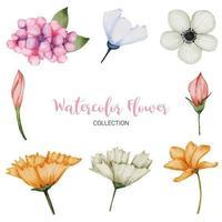 muitos tipos de lindas flores em aquarela vetor