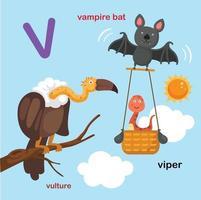 ilustração isolada letra do alfabeto v-vampiro morcego, víbora, abutre. vetor