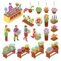 ilustração em vetor florista conjunto isométrico
