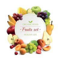 ilustração vetorial de fundo realista de quadro de frutas vetor