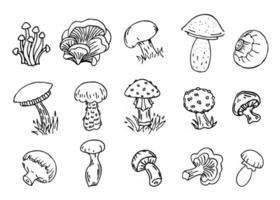 cogumelos, conjunto de ilustração vetorial, coleção de diferentes tipos de contorno preto cogumelo, isolado no fundo branco vetor
