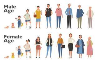 ilustração em vetor ciclo de vida humana. macho e fêmea crescem e envelhecem. ilustrações de desenho vetorial.