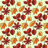 padrão de outono. grande conjunto de folhas de outono. folhas esculpidas abstratas. vetor