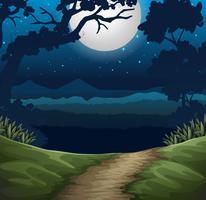floresta na cena noturna