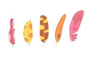 conjunto de penas de cores brilhantes de mão desenhada, moderno e abstrato. ilustração plana. vetor