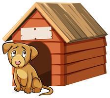 Cão olhando triste na frente da casa de cachorro