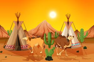 Camelos e tenda no deserto vetor