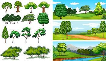 Cenas da natureza com árvores e campos vetor
