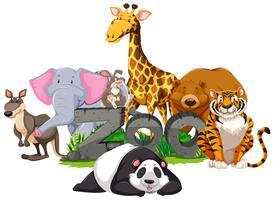 Animais selvagens em torno do signo do zoológico vetor