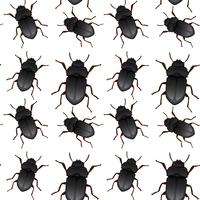 Padrão sem emenda de bug de besouro vetor