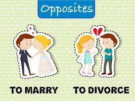 Palavras opostas para casar e divorciar vetor