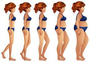 Uma transformação do corpo da mulher vetor