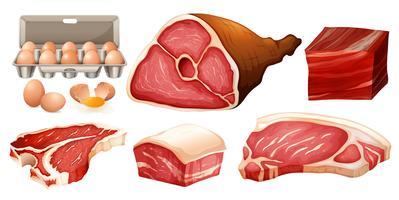 Diferentes tipos de carne fresca vetor